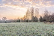 Frost and a rising sun