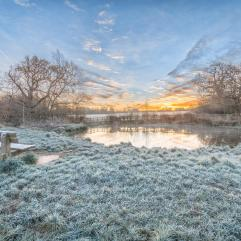frost at sunrise DKG